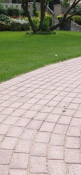 Coble stone pathway.jpg