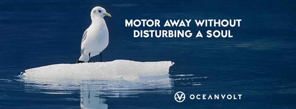 Motor away with Oceanvolt