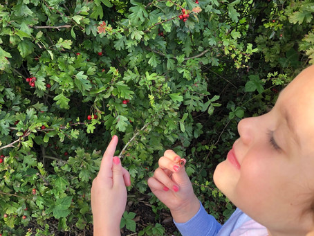 Boredom busting activities to do with kids outdoors!