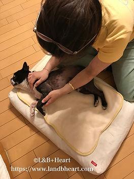 sw-massage-4.jpg