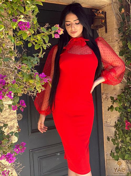 Scarlet Bodycon Dress