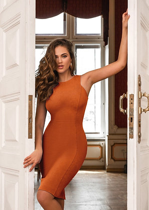 Bodycon Open Dress