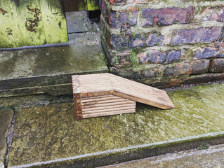 Hedgehog ramp