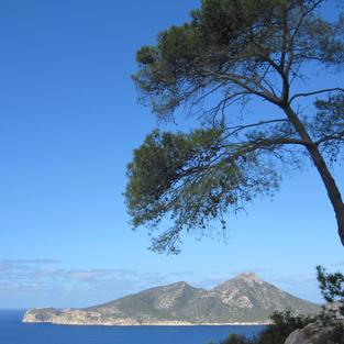 Dragonera island from Majorca
