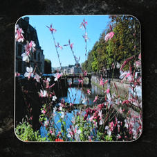 Gaura flowers on a bridge in Quimper Coaster