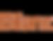 bilanz-logo_cuivre.png