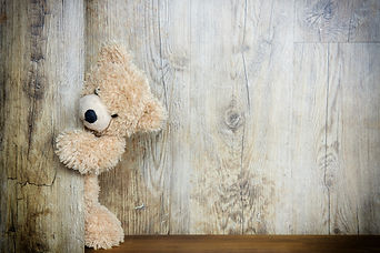 bear-3096377_1920.jpg