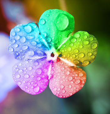 rainbow-5151724_1920.jpg