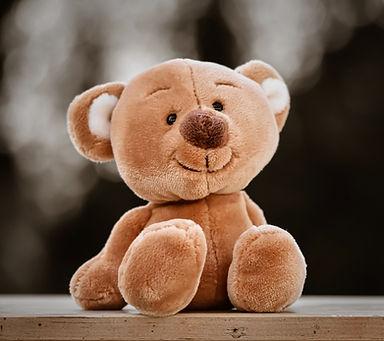 teddy-5119450_1920.jpg
