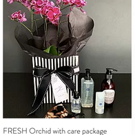 FRESH orchid box with care package R980