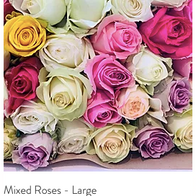 Mixed Roses - Large R 650