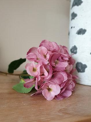 Vintage Pink Hydrangea Stem