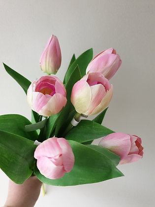 Pink Tulip (Set of three)
