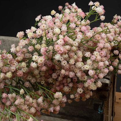 Pink Gypsophilia (Set of 2)