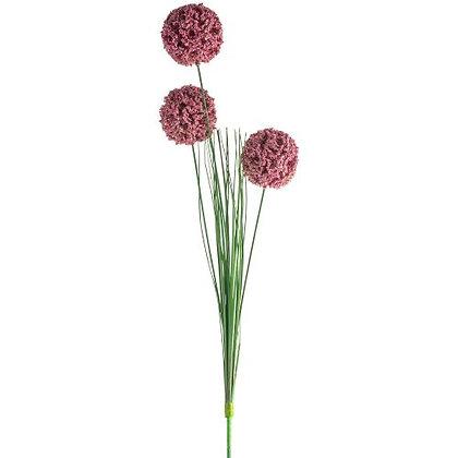 Pink Allium Stem