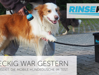 RINSEKIT IN dog IN TOWN