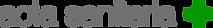 ACTA SANITARIA logo.png