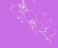 better sleep flower.png