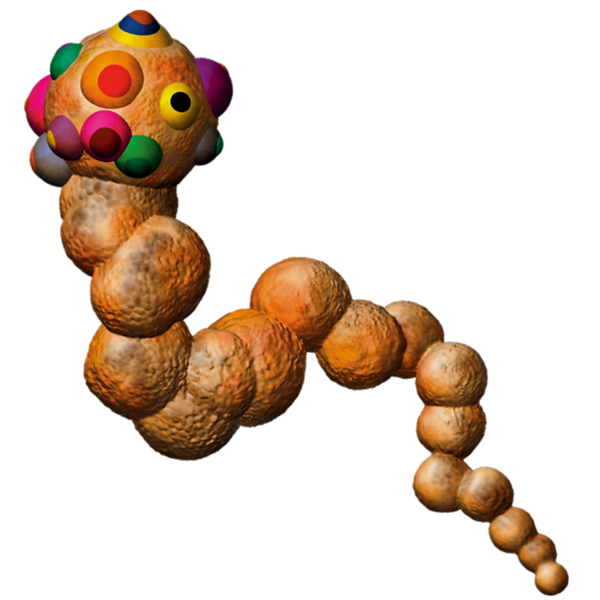 Space Meat - Crust Worm.PNG