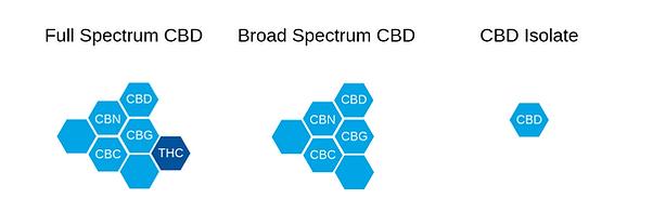 Types of CBD.png