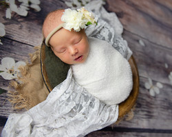 newborn photography so il