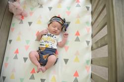 Hoffman Illinois Baby Photographer
