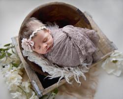newborn photography so illinois