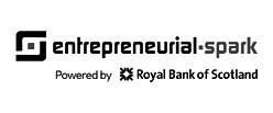 Entrepreneurial%20Spark_edited.jpg
