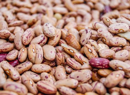 Fontes de proteína para Vegetarianos