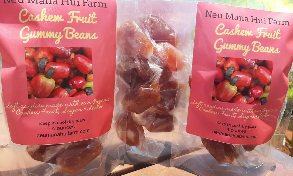 Cashew Fruit Gummy Beans