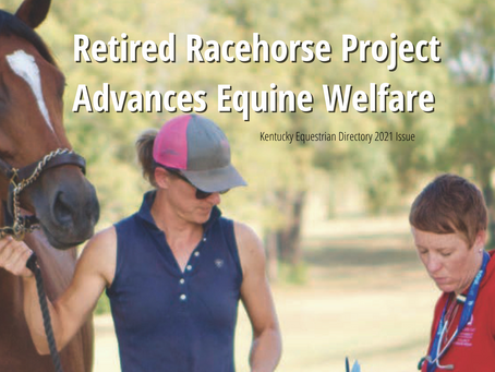 Retired Racehorse Project Advances Equine Welfare