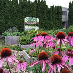 Squamish CAN Grow Community Garden