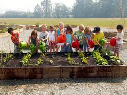 Mamquam Edible School Yard (MESY)