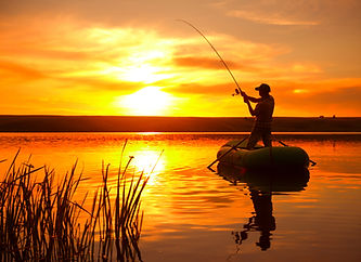 Baits and Attractant Flavors