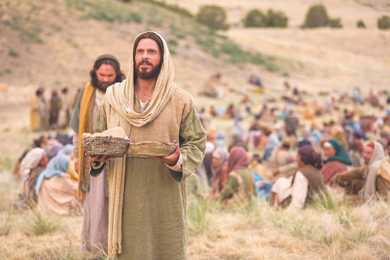 Homily of August 2, 2020, 18th Sunday in ordinary time