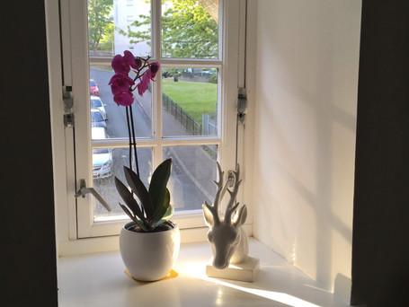Window in main bedroom.