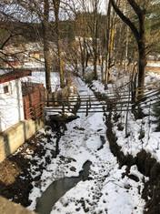 שלג ינואר 2019נוף.JPG