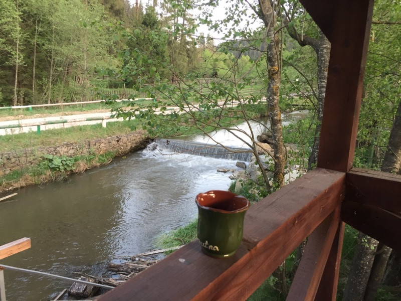 קפה במרפסת ברומניה.. לא כל בוקר זה קורה