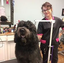 Groomer with doodle