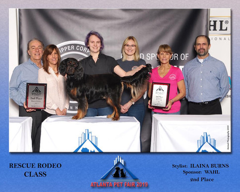 2nd Place in Atlanta Pet Fair Rescue Rodeo