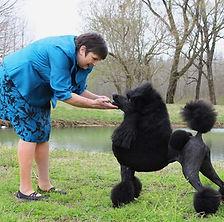 Owner with black standard poodl