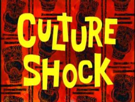 Culture Shock: Real or Imagined?