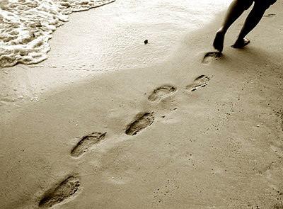 Trailing Spouse Survival Guide