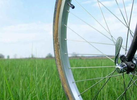 How Cycling Could Make Bilinguals Monolingual