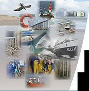 Activités liées à la mer cgt mer bretagne