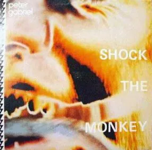 peter-gabriel-shock-the-monkey-soft-dog-