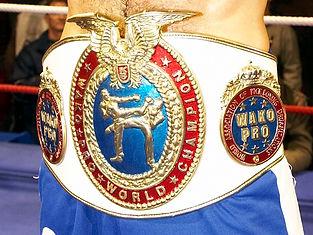 nuit de la boxe 2017 à Reims, champion du monde, WAKO, CRAM, reims