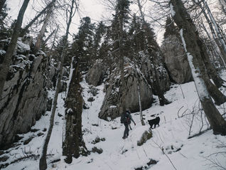2PVA_-_SLOVENIA_-déc._10_2018_-_449.jpg