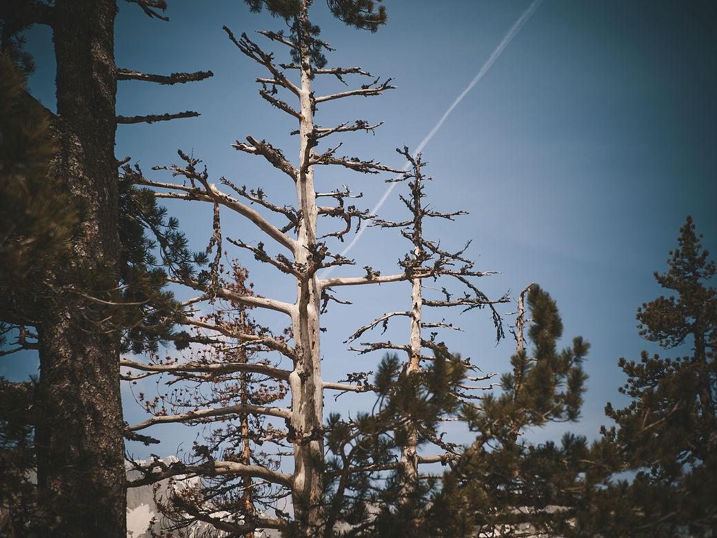 deux pas vers l'autre, 2PVA, thru-hike europe, ultralight hiking trip, europe, montenegro, crna gora, hiking montenegro