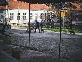 2PVA - Serbia- 0079 - nov. 24 2019.jpg
